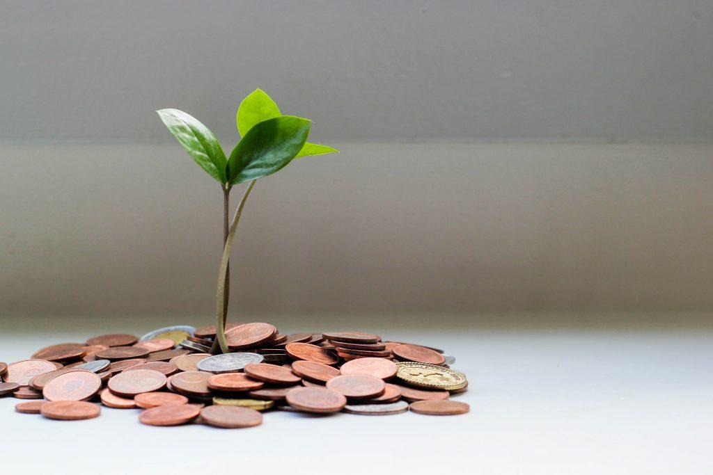 Kapital vermehren